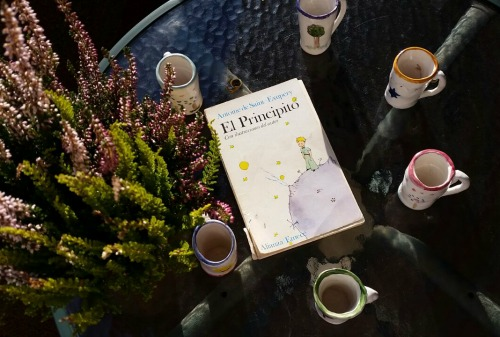Mugs and books 5 - El principito
